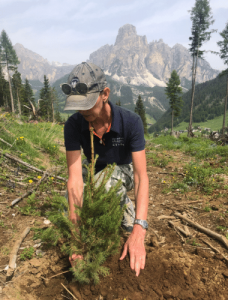 Planting trees in the Dolomites