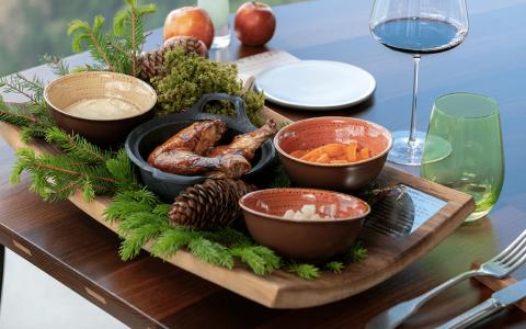 AlpiNN cuisine chicken and red wine